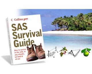 SAS-Handbok